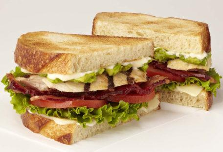 Toasted Chicken Club sandwich with bacon, tomato and avocado on toasted sourdough